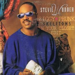 Stevie Wonder – Skeletons (Ziggy Phunk Skeletons In Your Closet Edit)