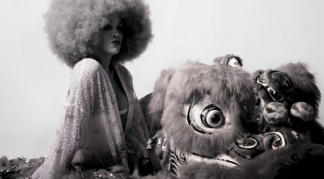 Introducing : Lion Babe
